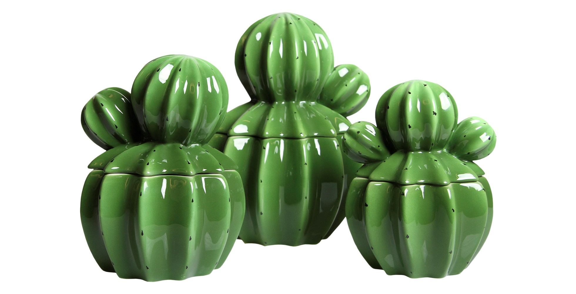 cactus storage jar
