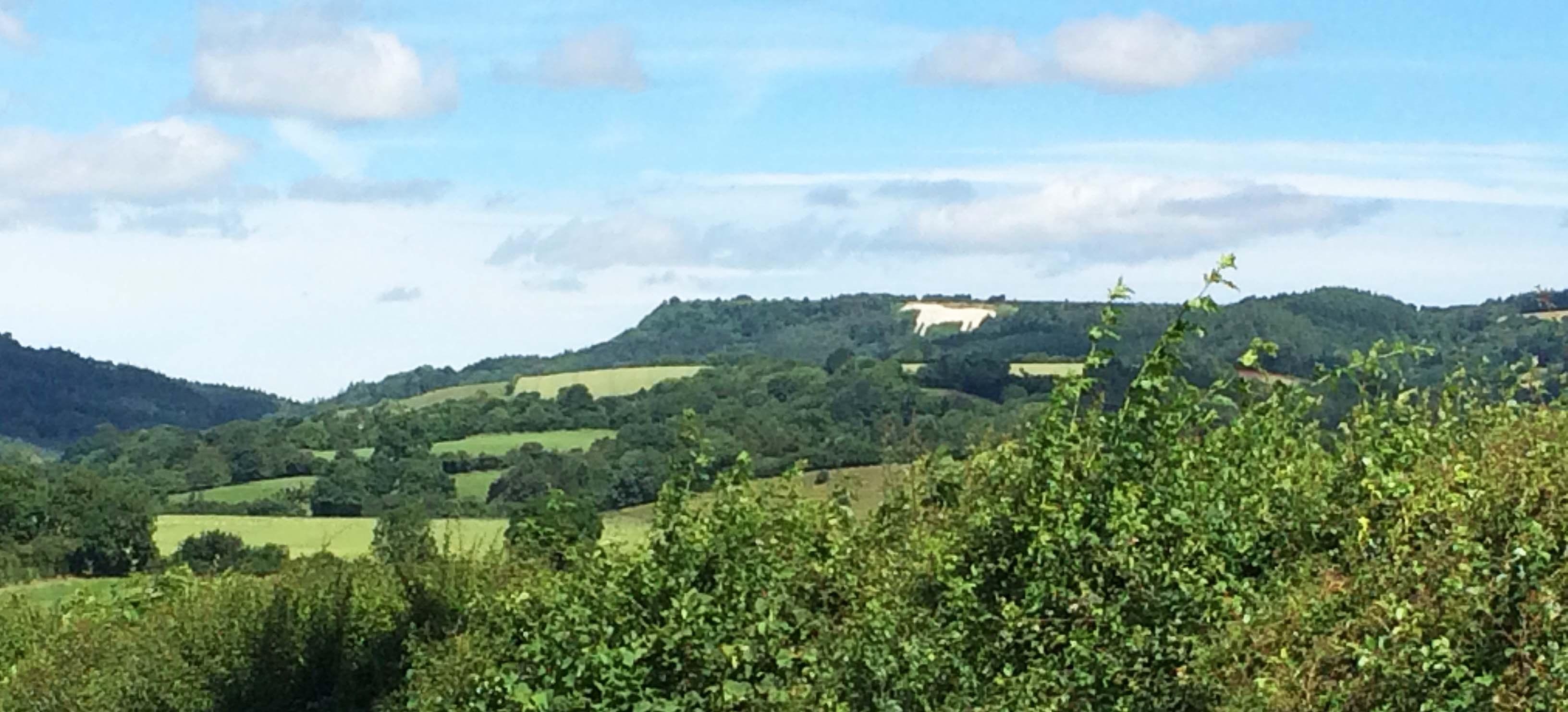 White Horse Ryedale Yorkshire