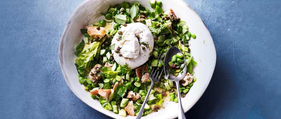 Broad Bean Panzanella Recipe