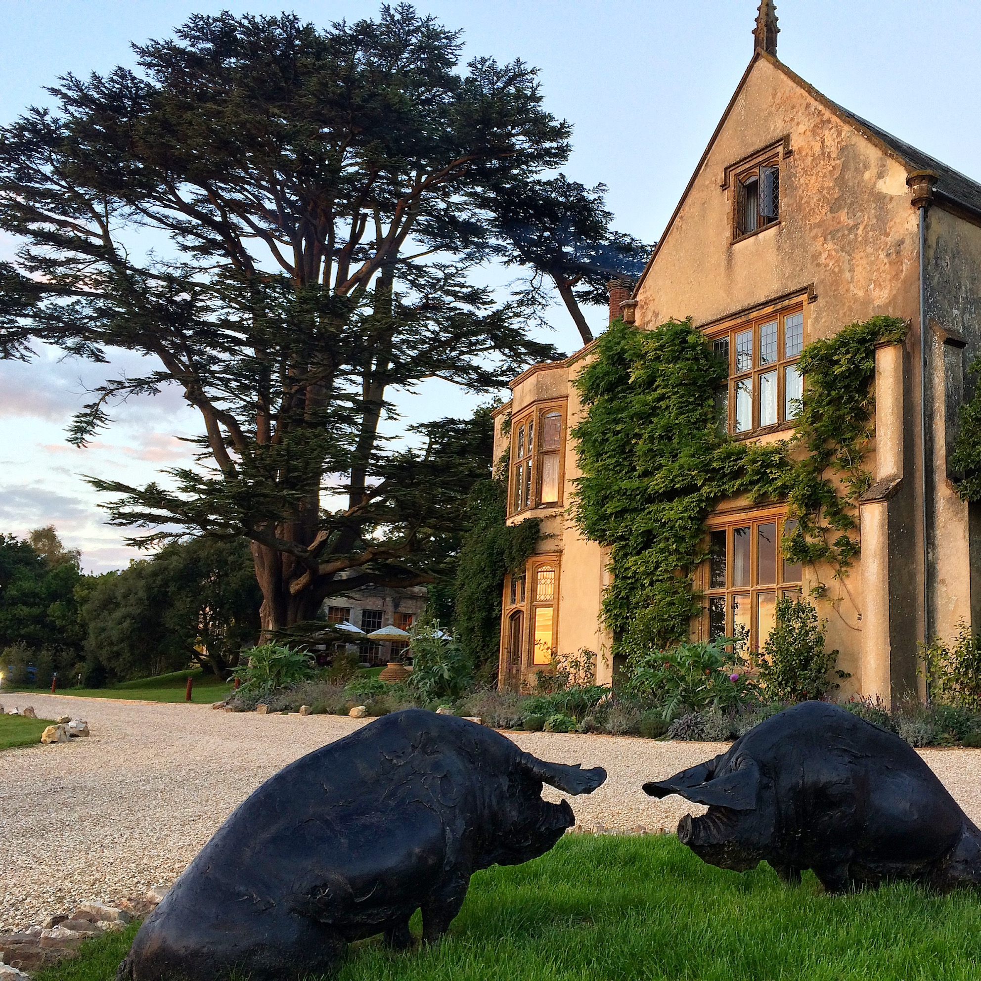 The Pig at Combe hotel and restaurant review
