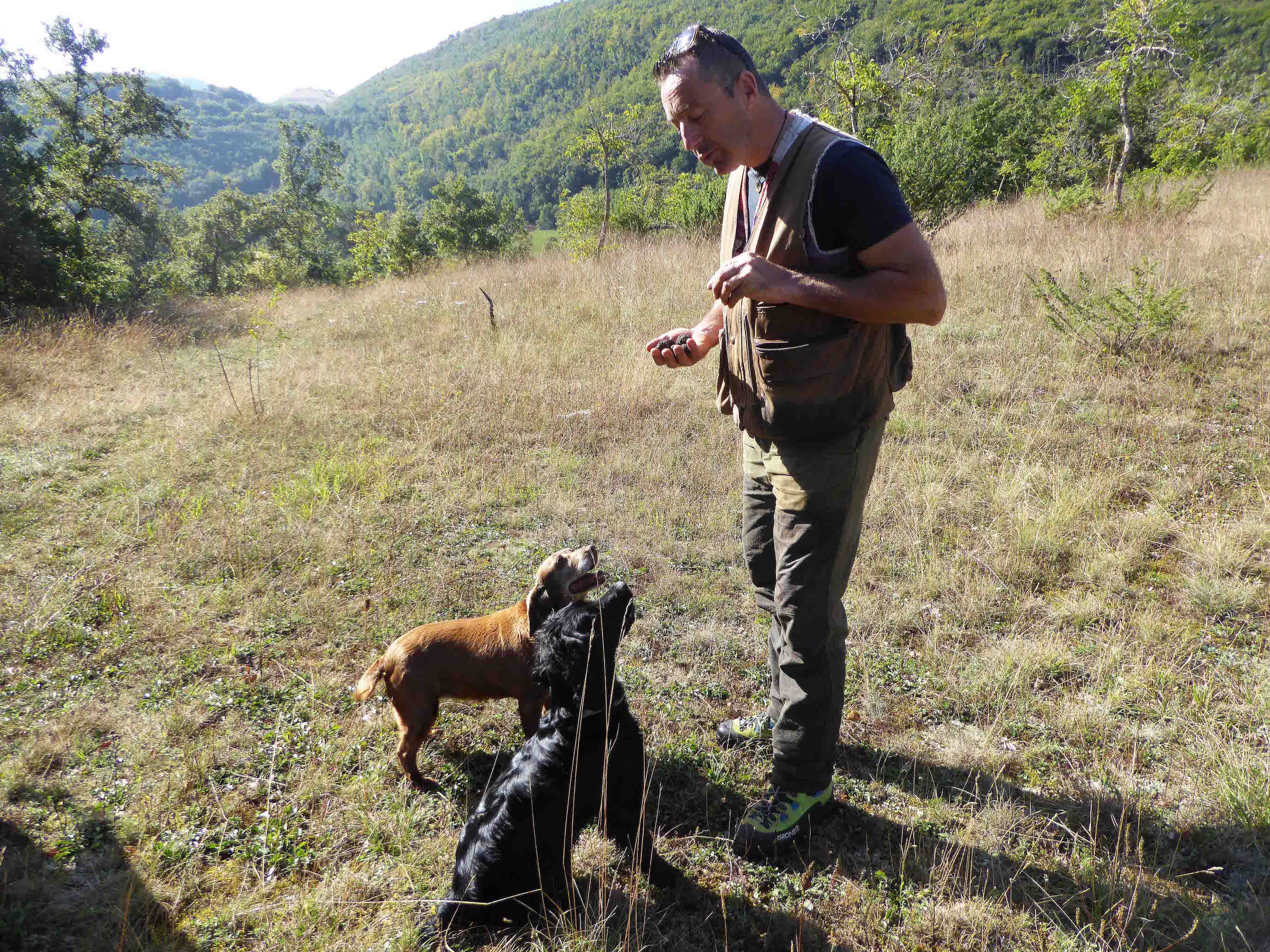 Truffle hunting in Umbria, Italy