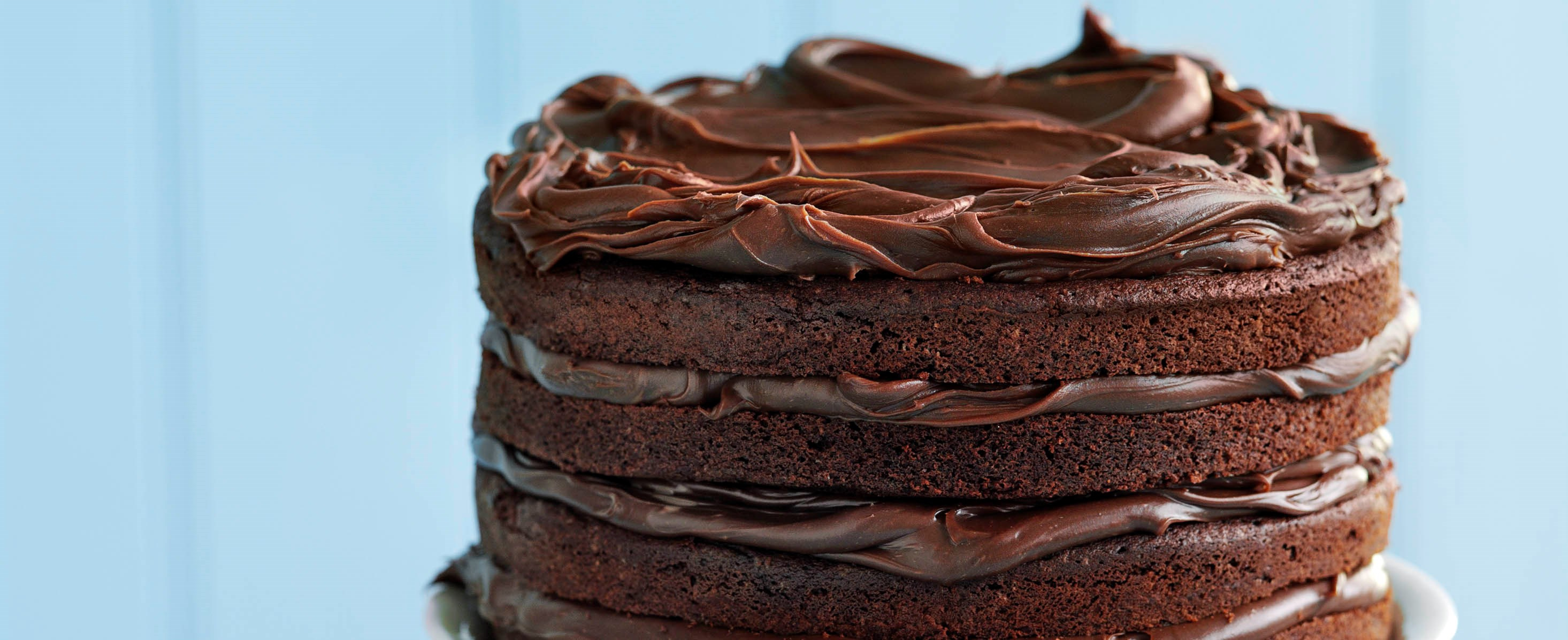 Best Ever Chocolate Mousse Cake