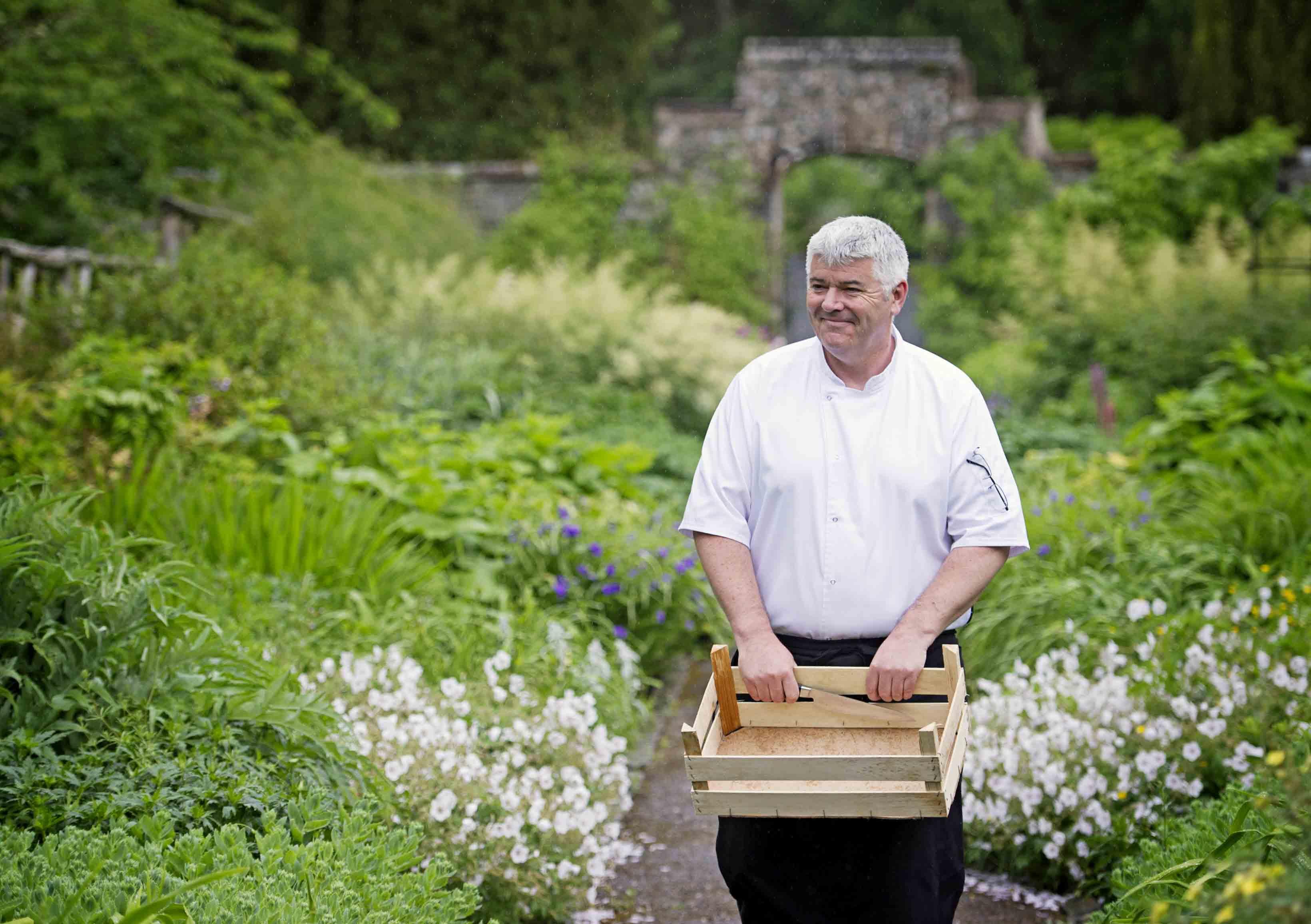 men in garden picking herbs