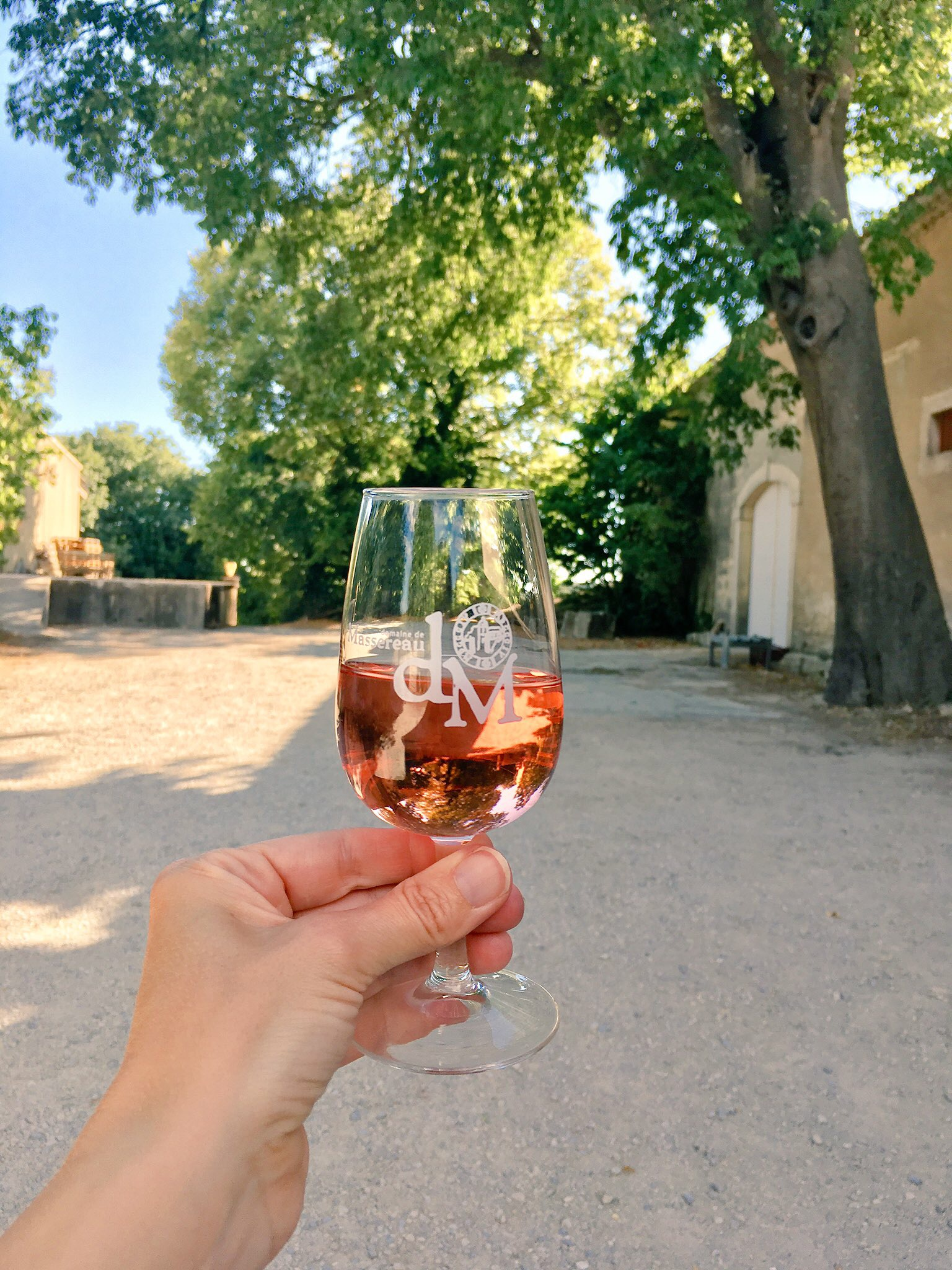 A glass of wine at the onsite vineyard