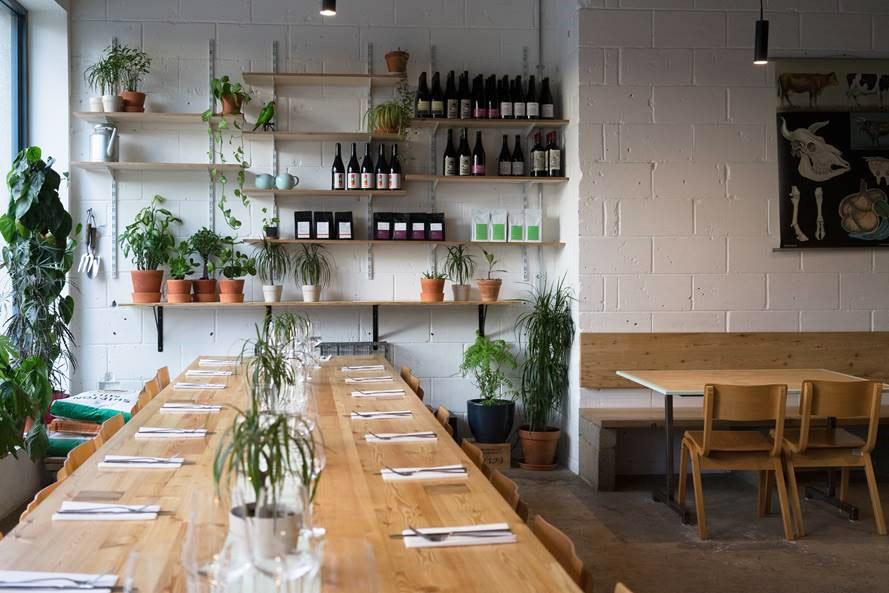 Dandy, Newington Green Restaurant Review