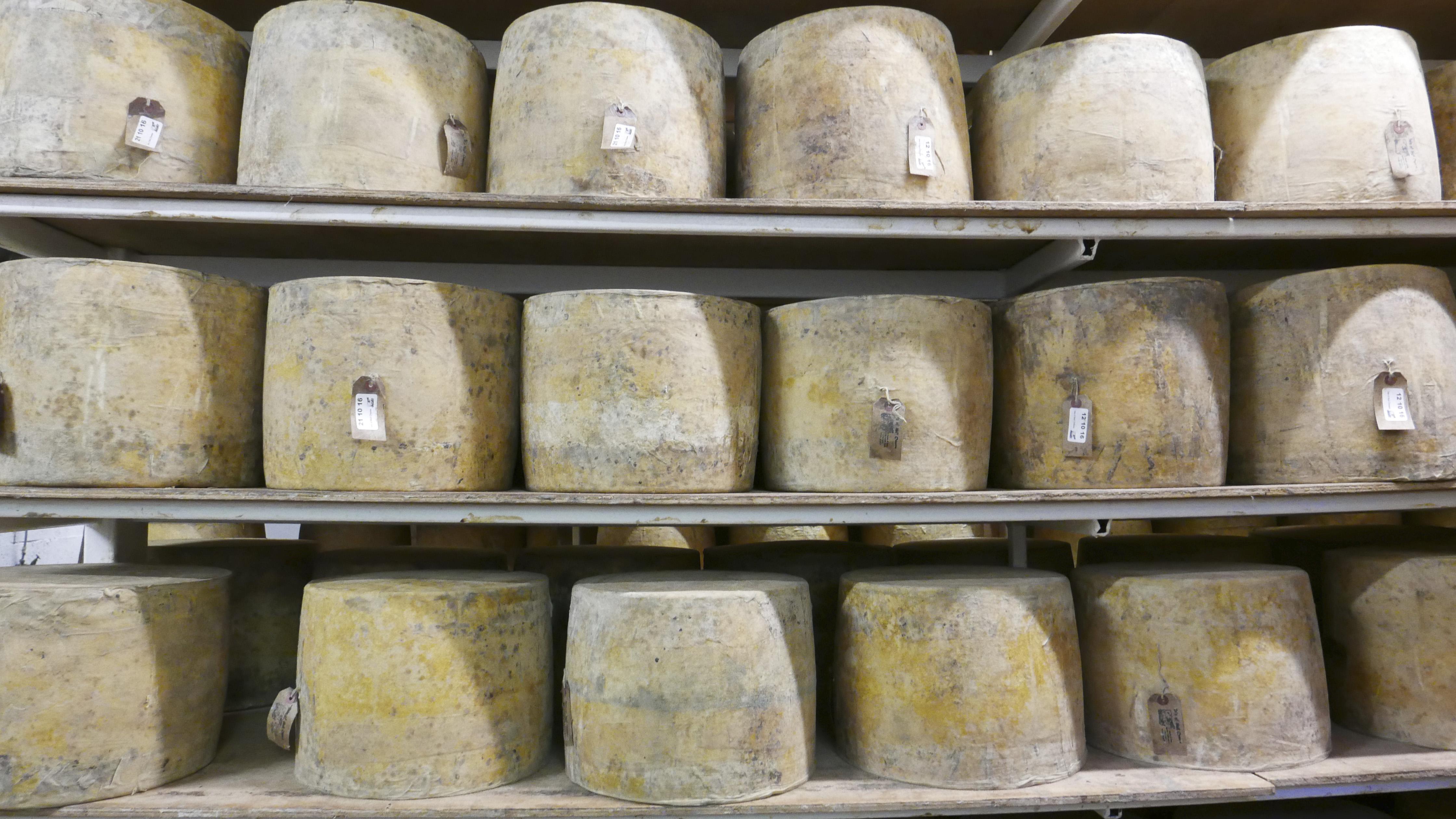 Isle of mull cheese at glass barn