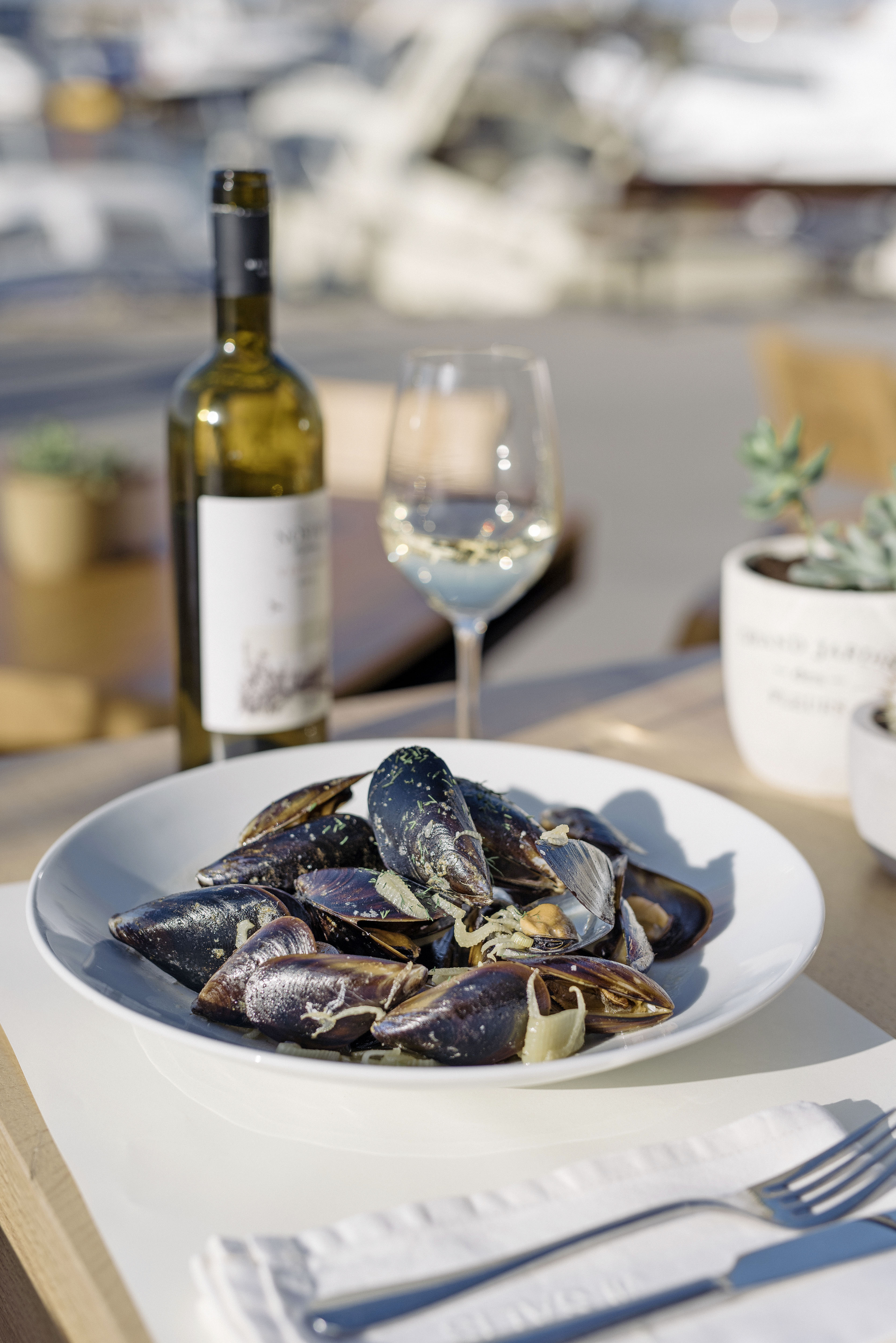 Mussels at Salis