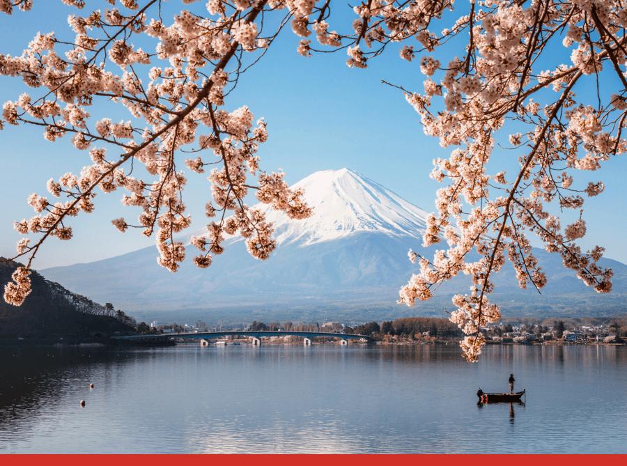 Sakurajima Stratovolcano