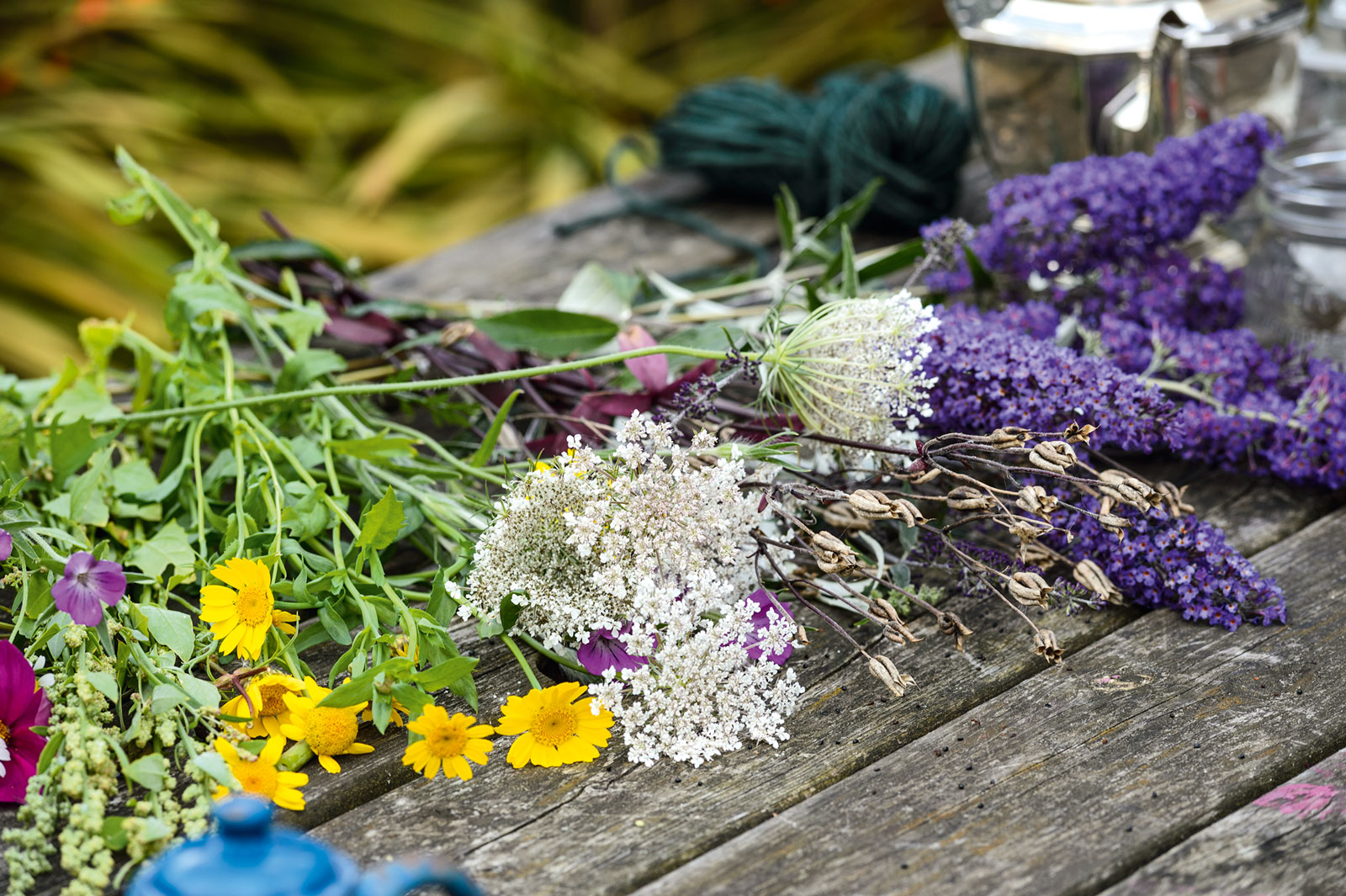 Garden guide: How to grow your own cut flowers