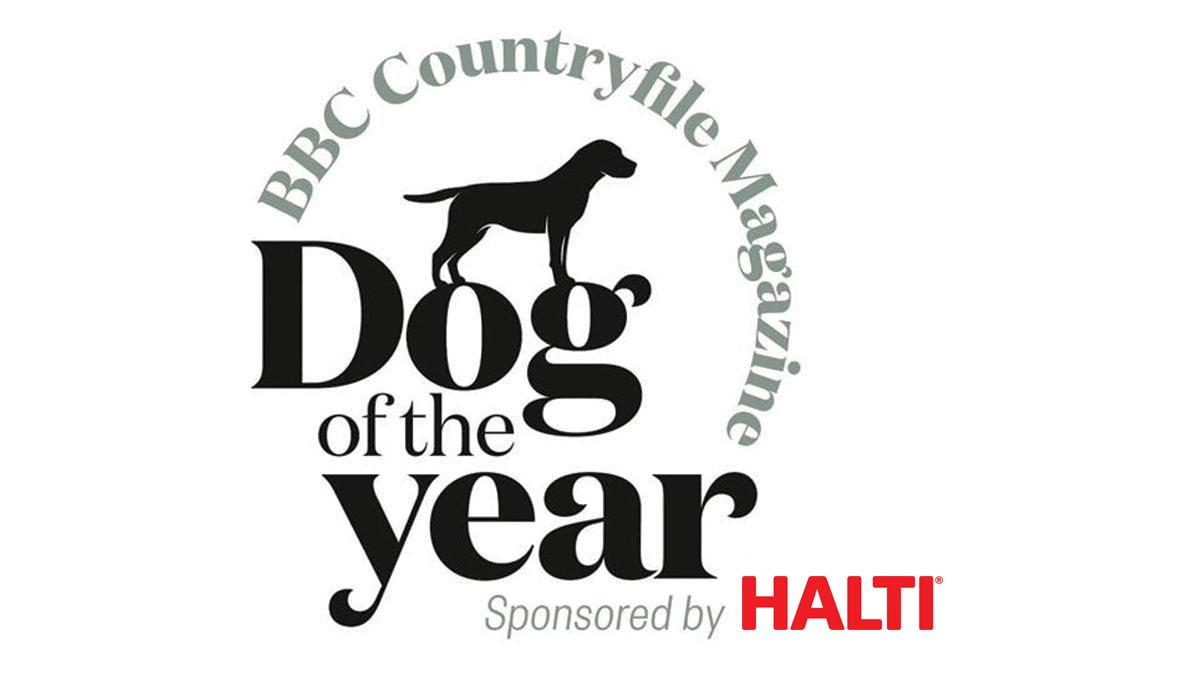 BBC Countryfile Magazine Dog of the Year 2018 photo contest - meet the winners
