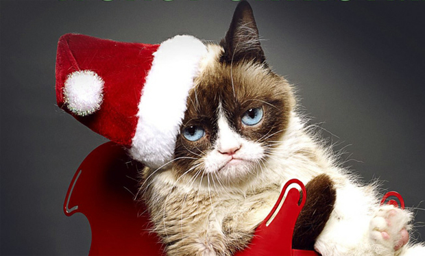 Internet celebrity Grumpy Cat to star in her own Christmas movie ...