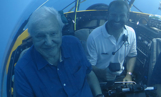 David Attenborough on the Great Barrier Reef, climate change, Christmas, and turning 90