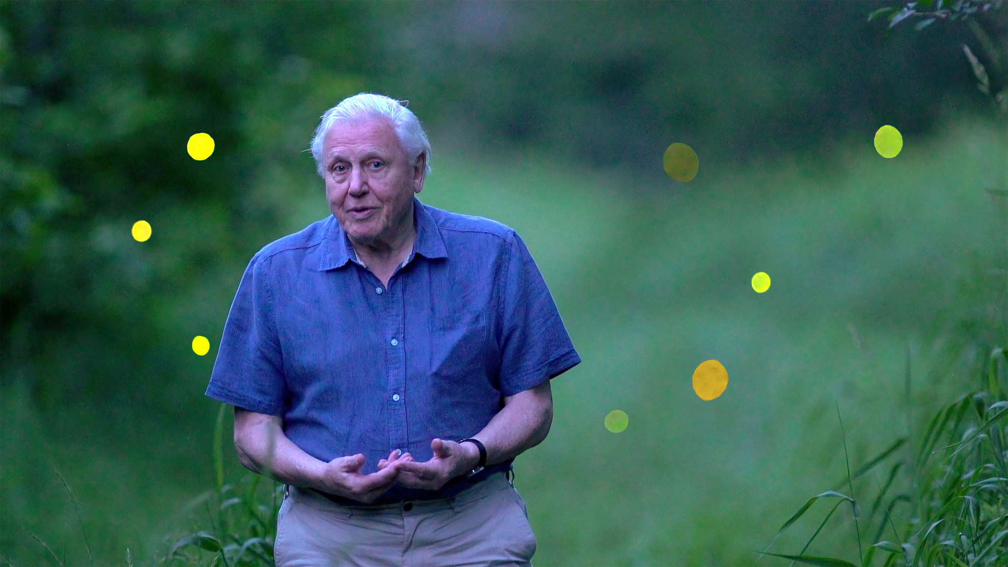 David Attenborough Natural History Museum Alive Full Episode