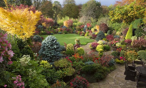 britain u2019s best back gardens  alan titchmarsh u0026 39 s five favourites