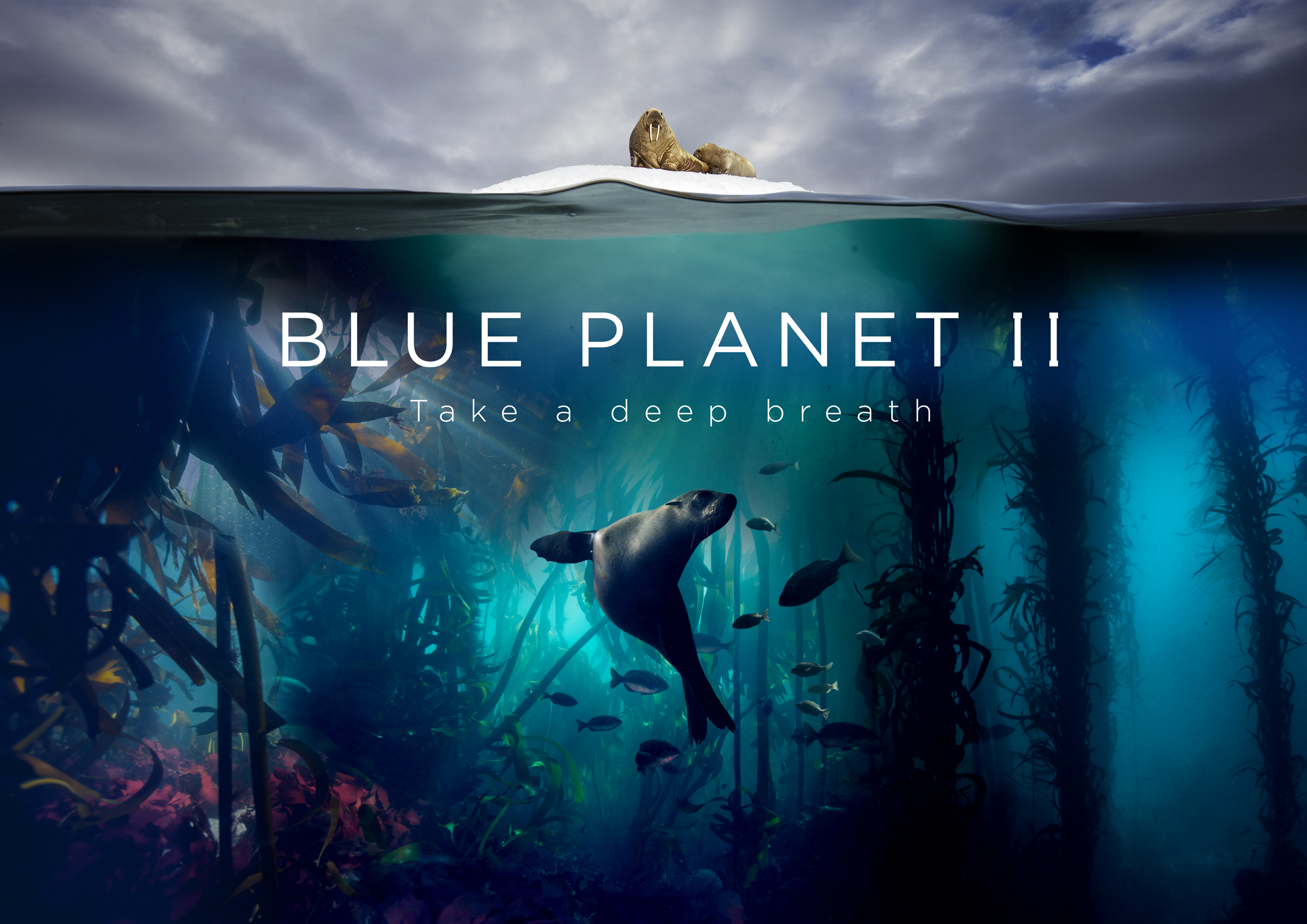 Blue Planet II Landscape