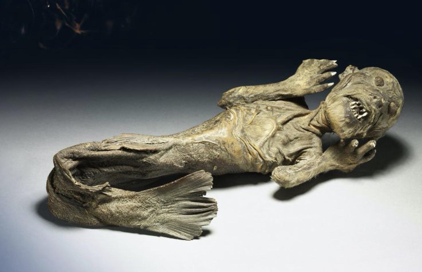 Mermaid (Trustees of the British Museum, EH)