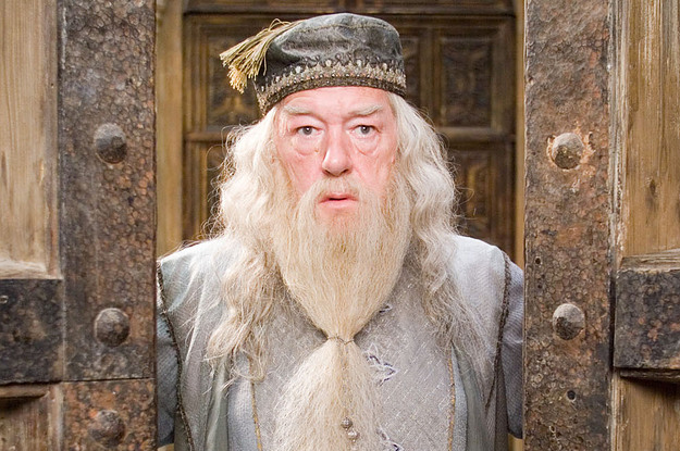 Professor Dumbledore Harry Potter