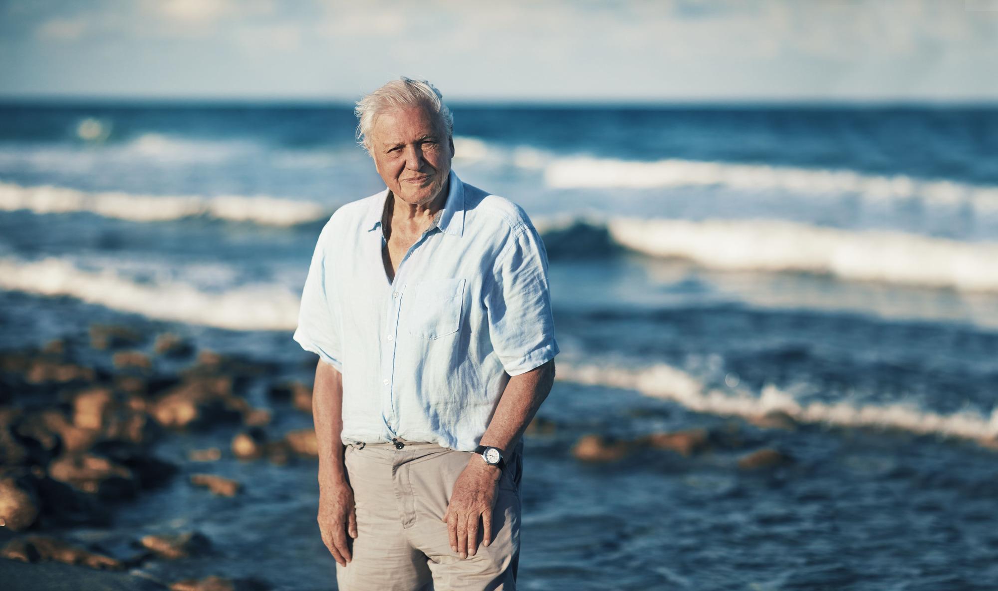 Sir David Attenborough in Blue Planet II (BBC, TL)