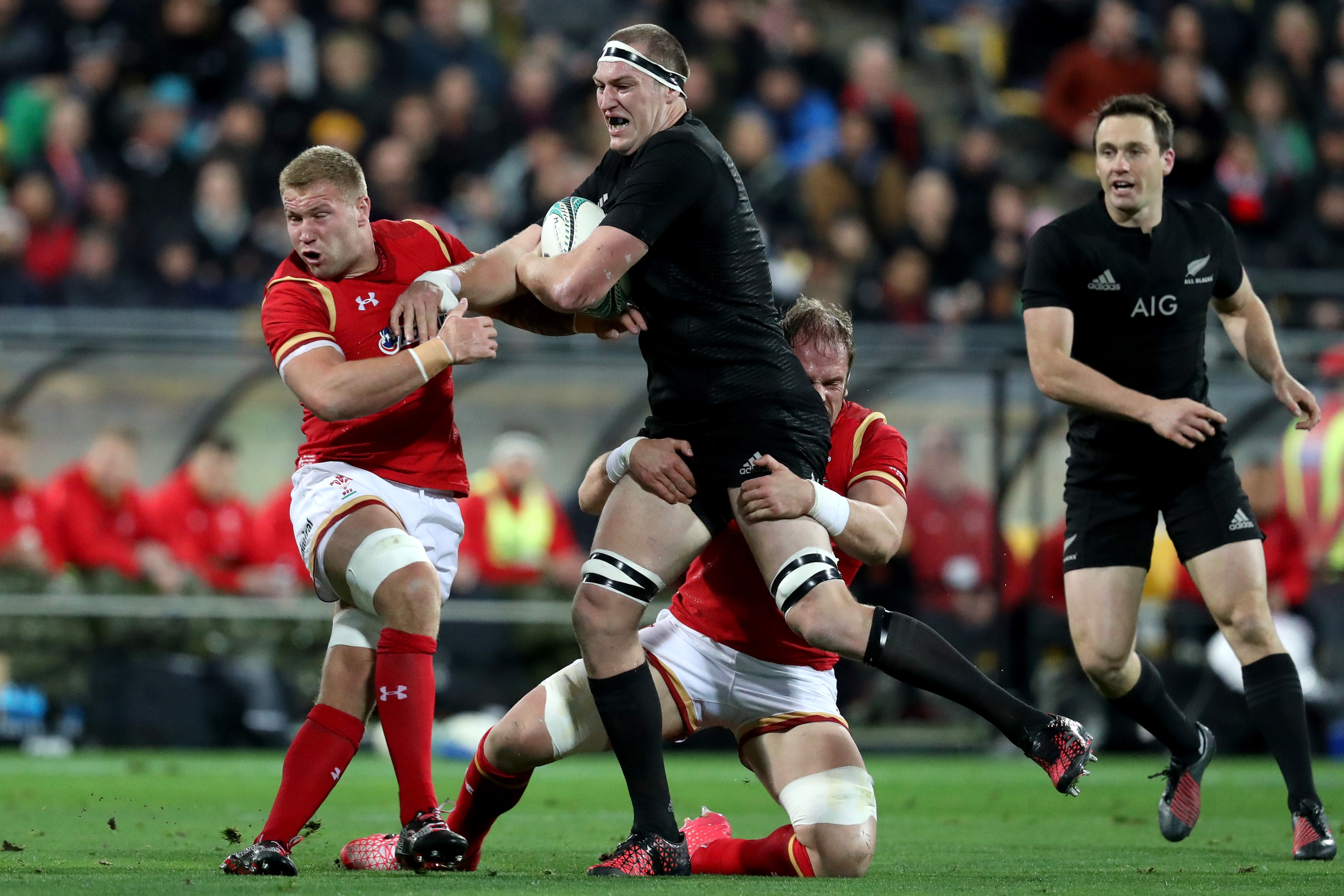 New Zealand v Wales (Getty, EH)