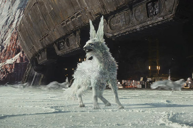 A Vulptex in Star Wars: The Last Jedi (Disney, HF)