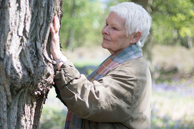 Judi Dench on Trees, BBC Pictures, SL