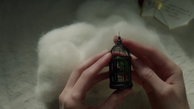 Peebo's cage - The Miniaturist