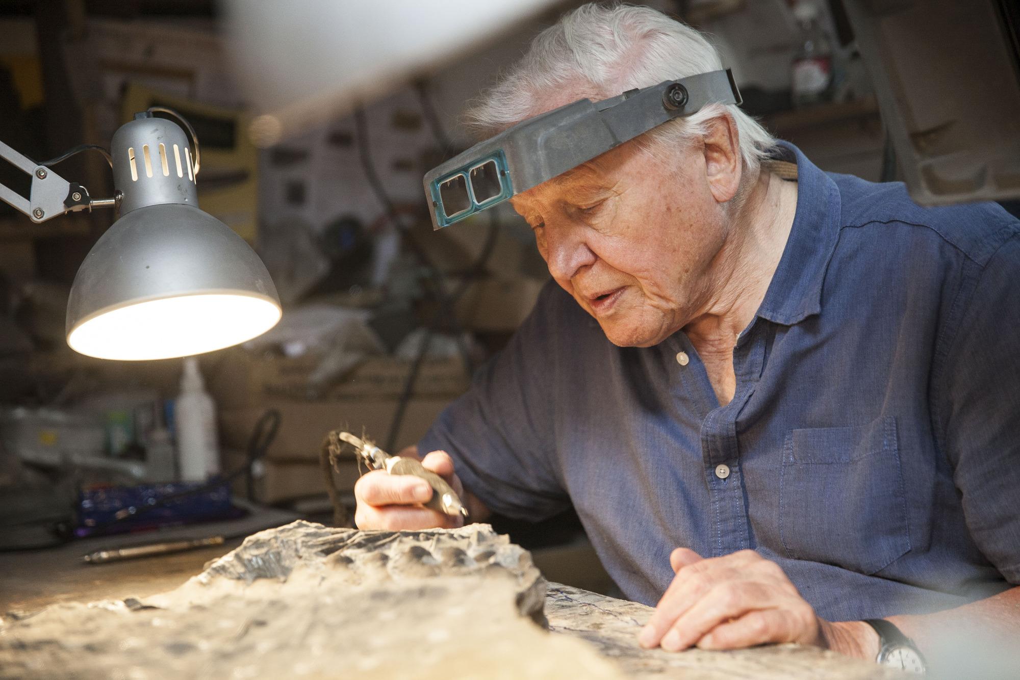 David Attenborough (BBC, EH)