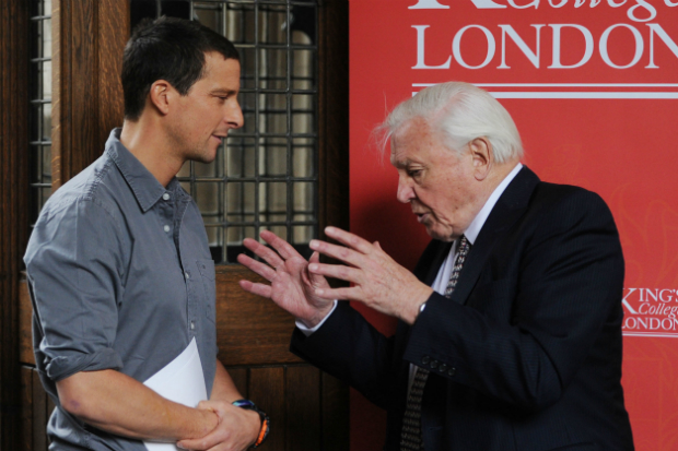 David Attenborough is not happy with Bear Grylls