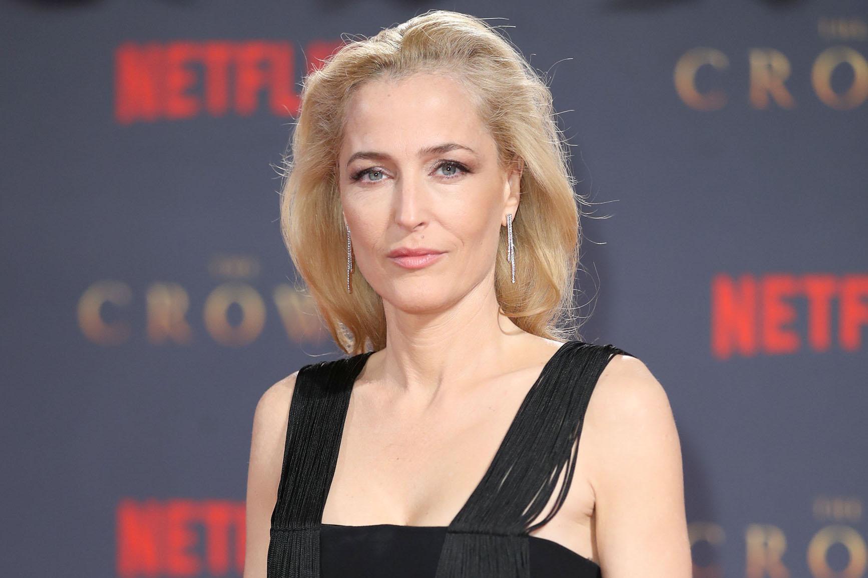 Netflix casts Gillian Anderson in new TV series Sex ...