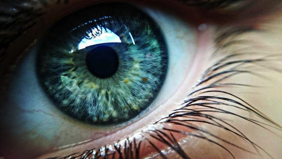 Do blind people see in their dreams?