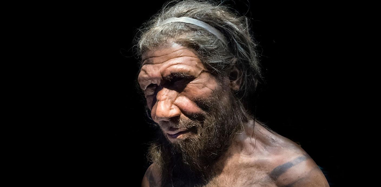 Instant Genius: Neanderthals