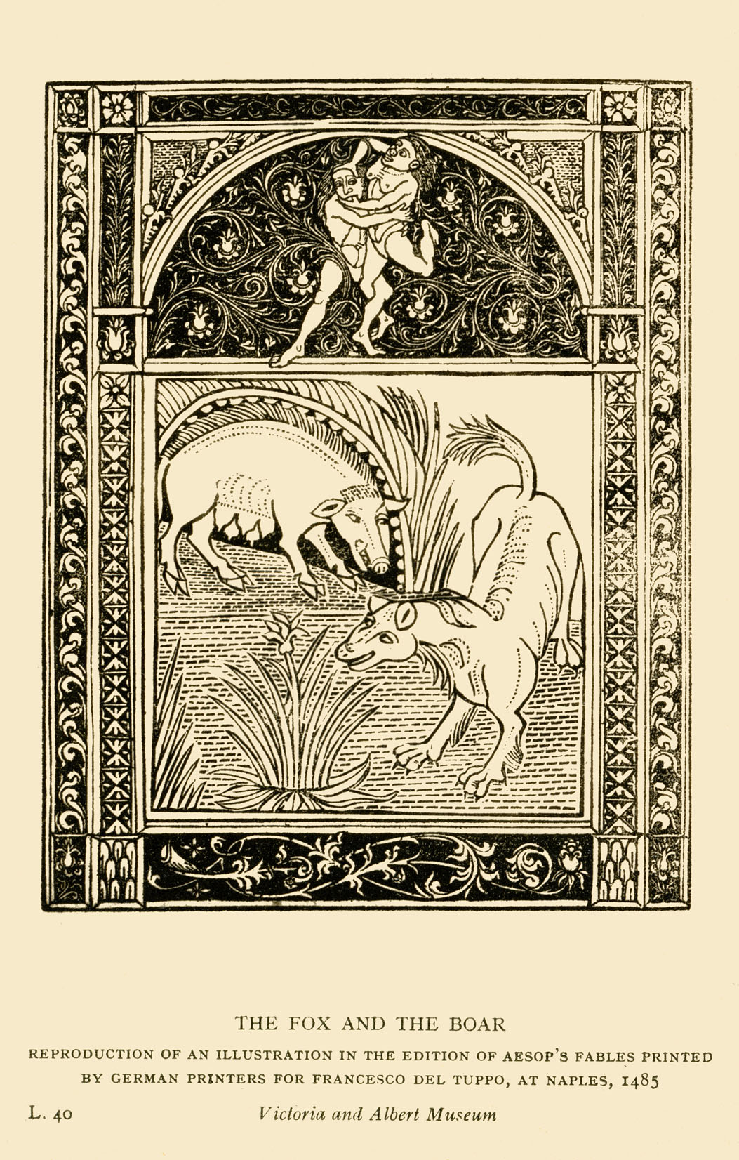 Aesop 's fables: The Fox and the Boar. Illustration after 1485 edition printed in Naples by German printers for Francesco del Tuppo. Reproduction. Aesop (Esop), Greek writer, c. 620-564 BCE.  (Photo by Culture Club/Getty Images) *** Local Caption ***