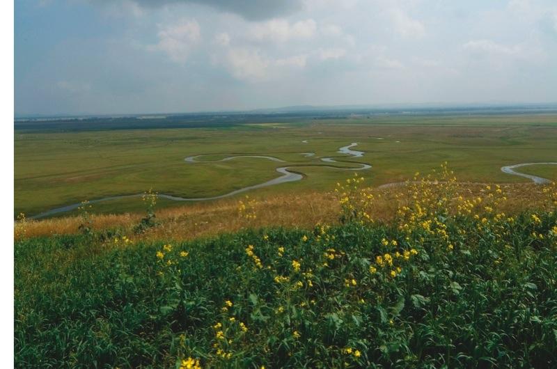 BME8P5 Shandian River, Bashang Grassland, Zhangjiakou, Hebei Province, China