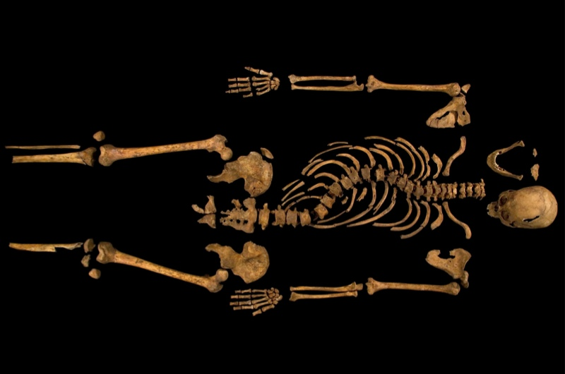Richard-III-skeleton-resized-a7233f5