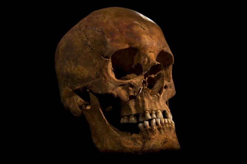Richard-III-skull-copy-2_0-9c58850