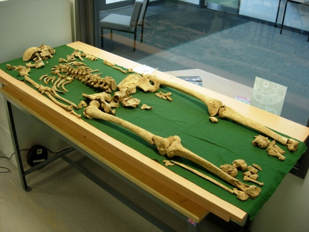 Skeleton20of20Racton20Man5B45D_1_0-9c99b98