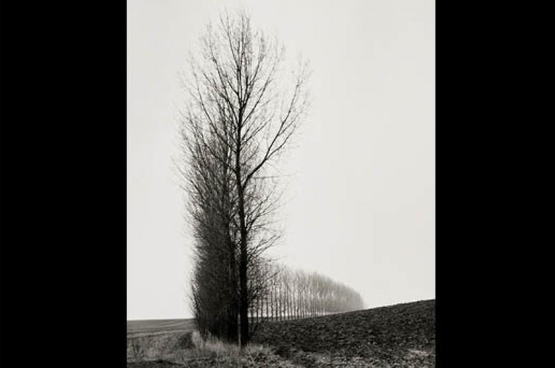 From a collection of reflective landscape photographs of the Somme battlefield.