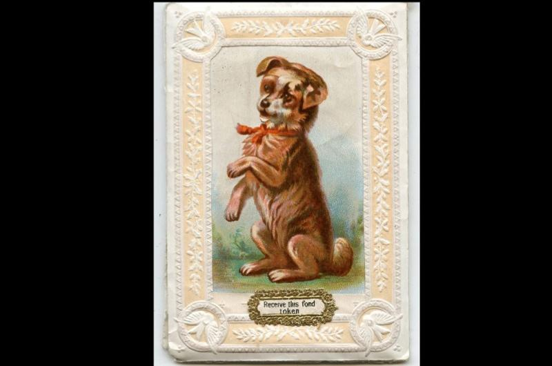 A Valentine's day scented sachet showing a brown dog sat up on its hind legs.