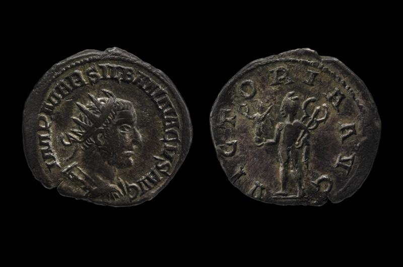 silbannacus-3-a284787