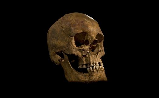 skullblack-d121144