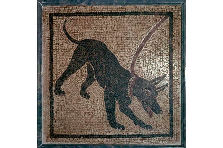 Roman mosaic of a dog, bearing the legend 'Cave Canem' underneath, from Pompeii, from Naples National Museum's collection, 1st century. (Photo by CM Dixon/Print Collector/Getty Images)