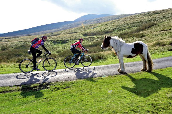 Two cyclists ride past a pony on a the moors in the North of England around Carlisle