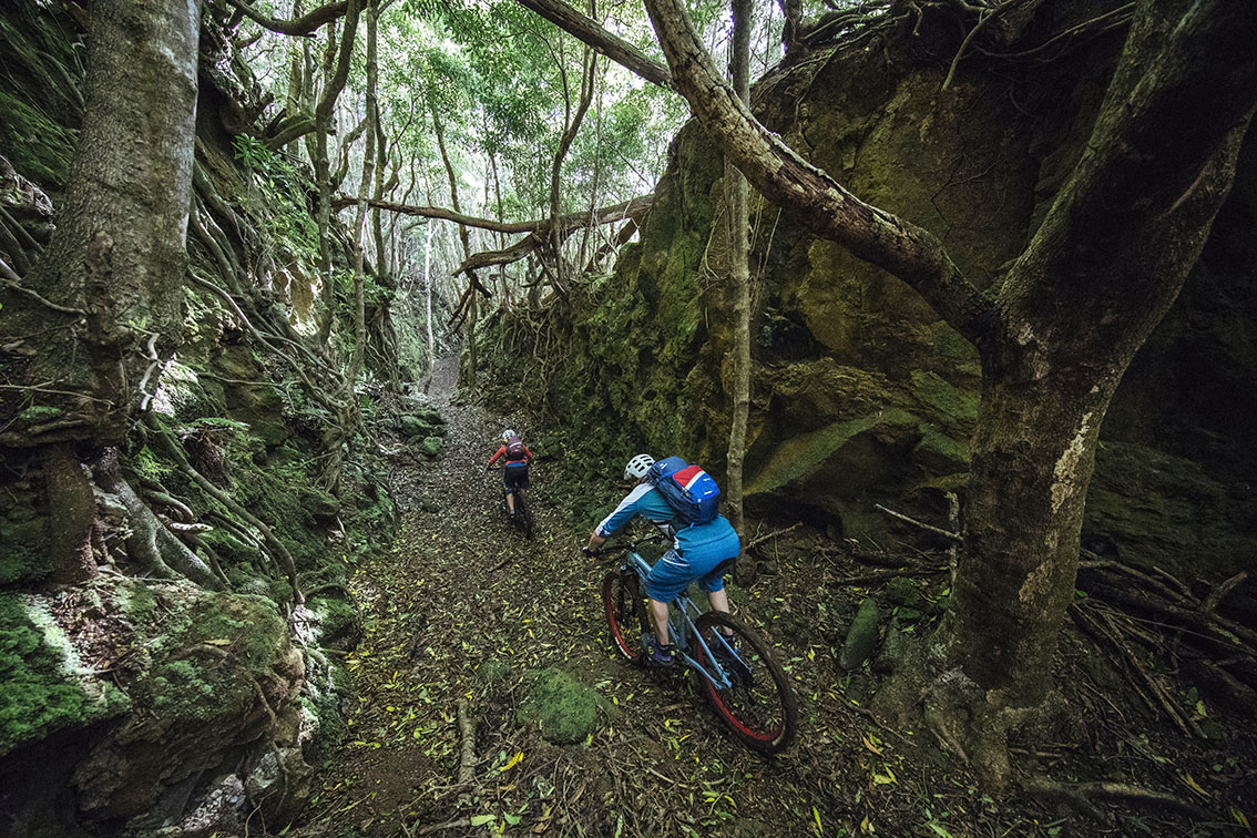 Riding through a root infested ravine on the Azores